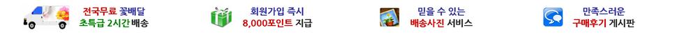 행운꽃배달-취급품목:꽃바구니,꽃다발,꽃병,꽃상자,축하화환,근조화환,관엽식물,동양란(동양난),서양란(서양난),난초화분,개업화분,승진난,장례식장화한,분재배달,전문-배달지역:서울,부산,대구,대전,울산,광주,인천,광역시,제주,청주,부천,전주,천안,수원,포항,창원,일산,강남,분당,안산,춘천,경주,의정부,마산,목포,군산,용인,평택,여의도,동탄,파주,통영,이천,제주도,전국,전지역-행사:장례식장,결혼식장,경조사,개업식,병원개원식,취임식,이사축화,영안실,장례식,조문,추모,상가집,기념일,승진,진급,생일,출산,임산축하,꽃선물,축화한-서비스:전국무료,365일배달,당일배송,회원할인,배송사진,구매후기,일요일배달,당일꽃배달,전문사이트,꽃집싼곳,할인전문점,꽂배달저렴한곳,추천잘하는곳