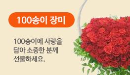 100송이 장미 : 100송이에 사랑을 담아 소중한 분께 선물하세요.